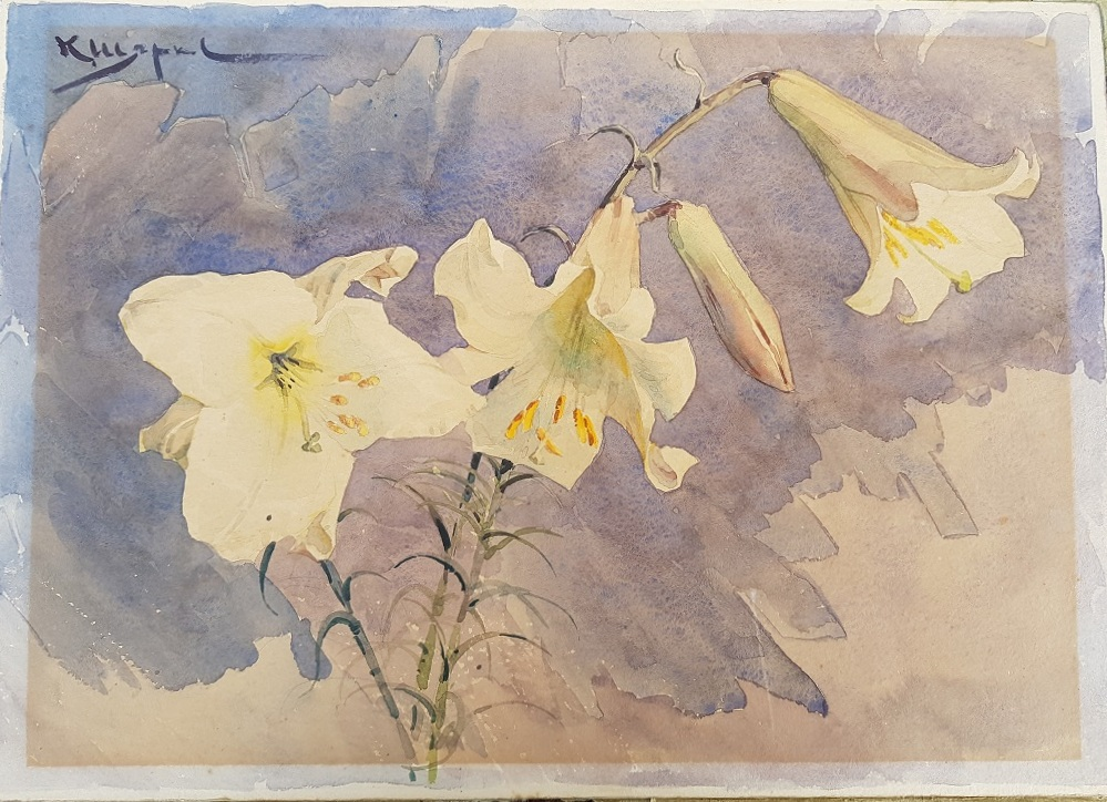 lilium watercolour before restauration