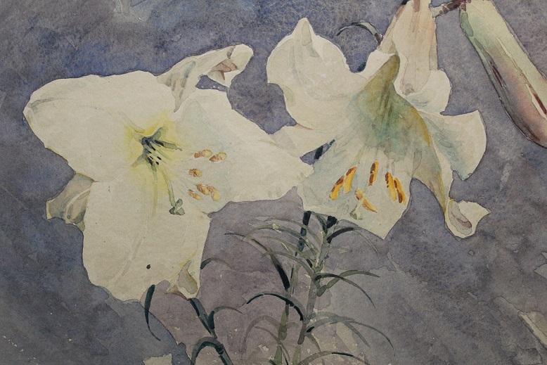 Lilium - after detail 1